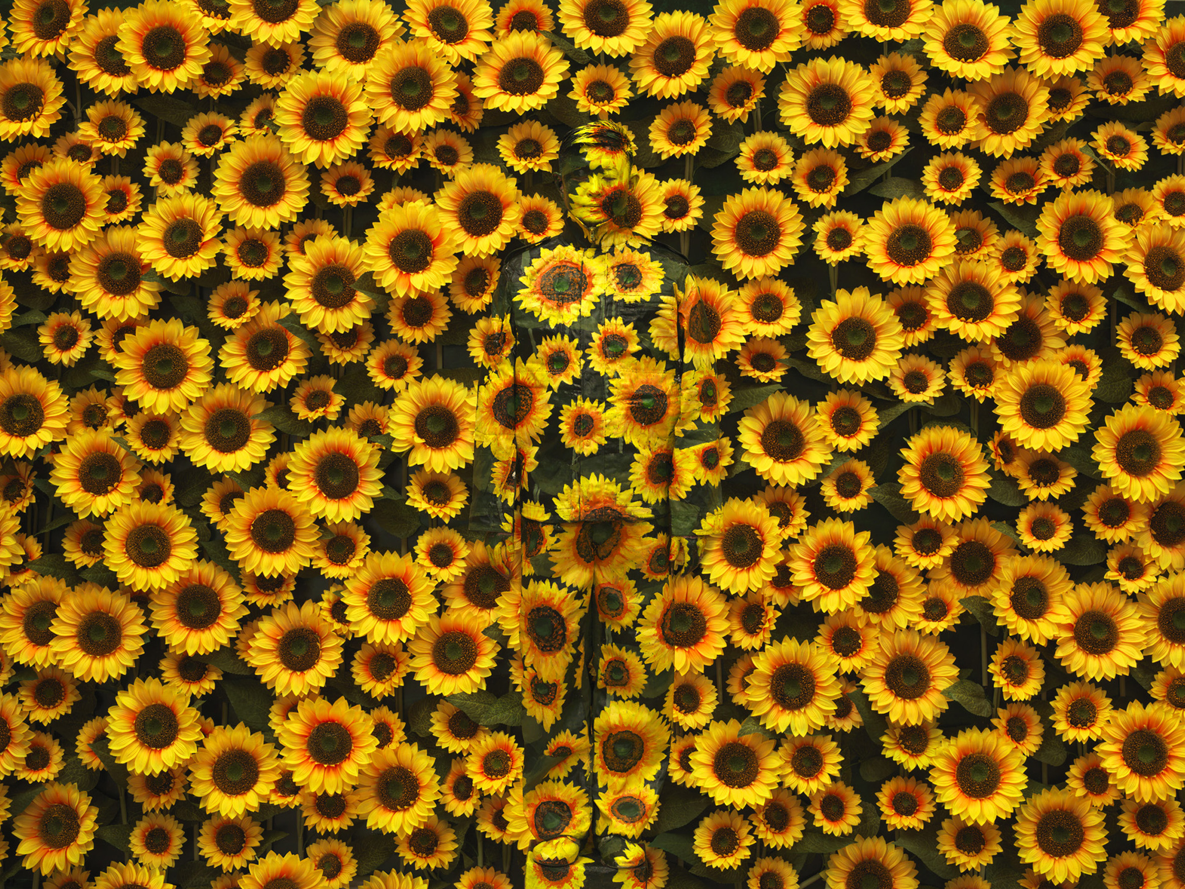 Sunflower I, série Hiding in the city, 2002,© Liu Bolin, courtesy of the artist / Galerie Paris-Beijing