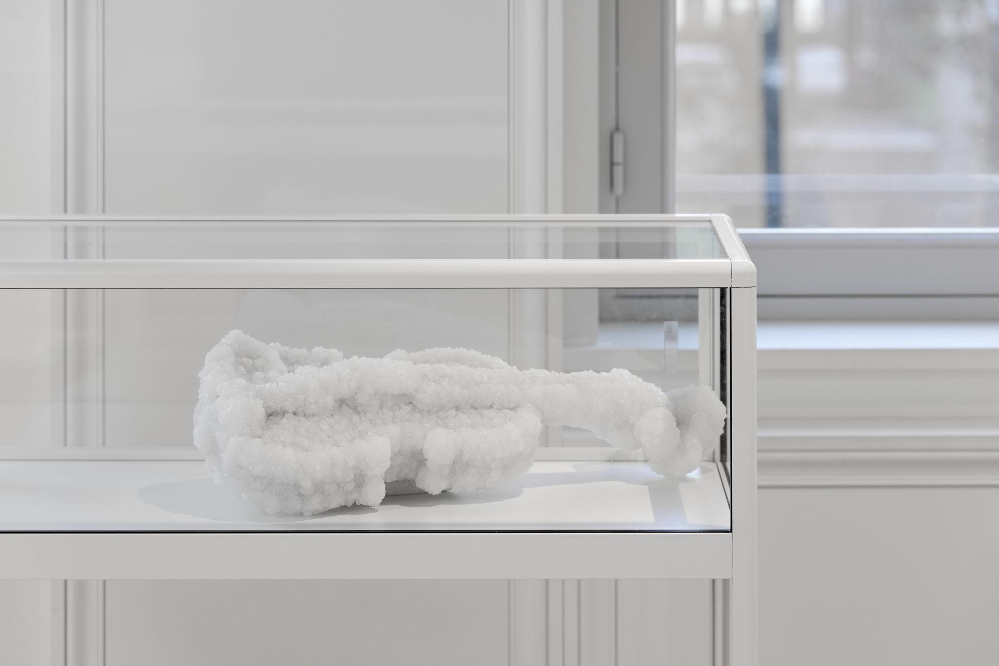 Chambres à part 13 – Parfums de Femmes – Sigalit Landau – Violon, 2014, Violon et cristaux de sel, 62×23,5 x 13 cm, unique – copyright Aurélien Mole – Laurence Dreyfus
