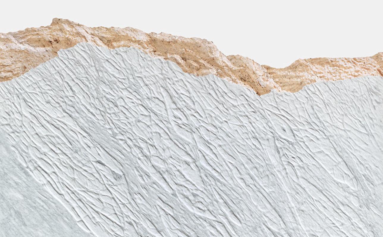 Giuseppe Penone, Pelle del monte (detail), 2012, Carrara marble, 67 × 63 × 2 1/4 inches (170.2 × 160 × 5.7 cm) © Giuseppe Penone. Photo by Douglas M. Parker Studio.