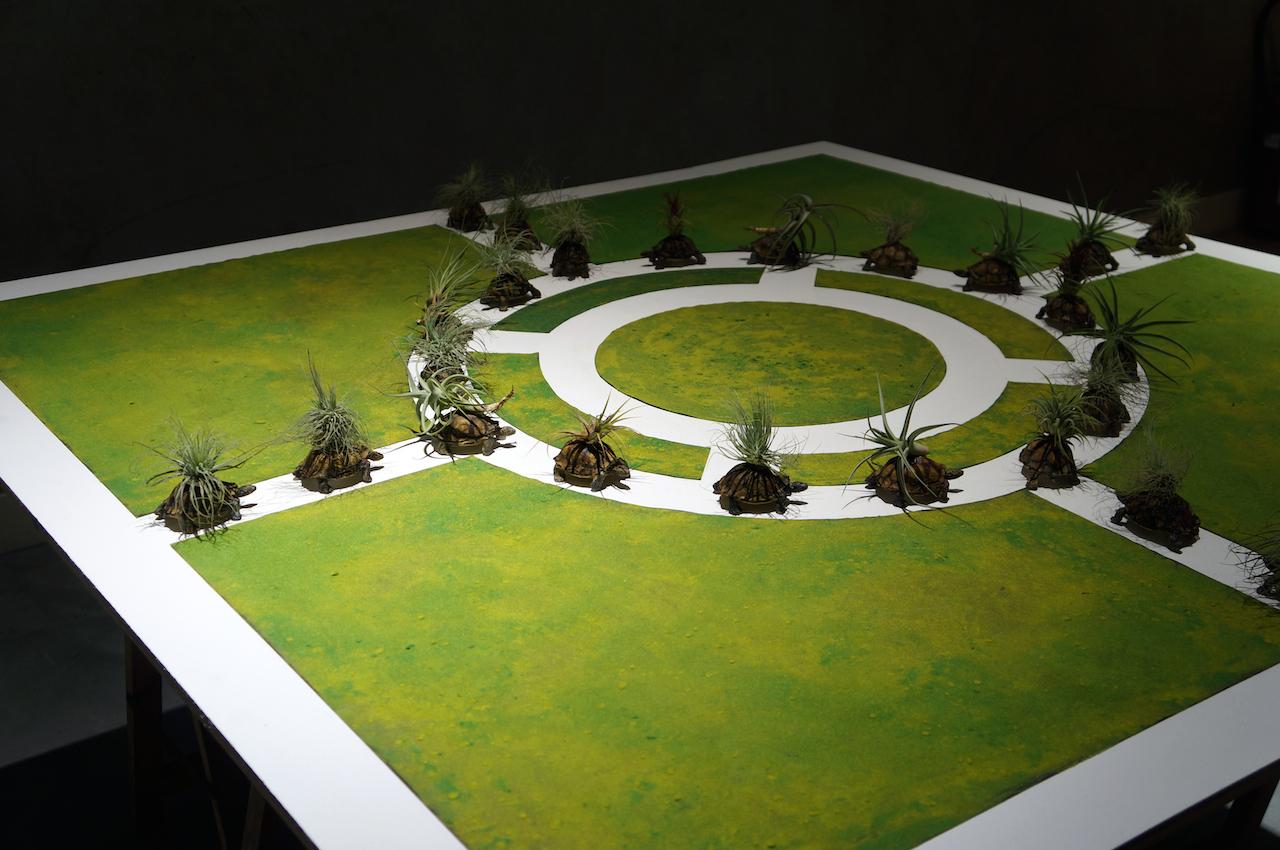 Jean-Luc Bichaud,  3 Jardins vagabonds- maquette d'étude – 2018 -Plâtre, cire et cirage, tillandsias, flocage et peinture sur CTBX – copie