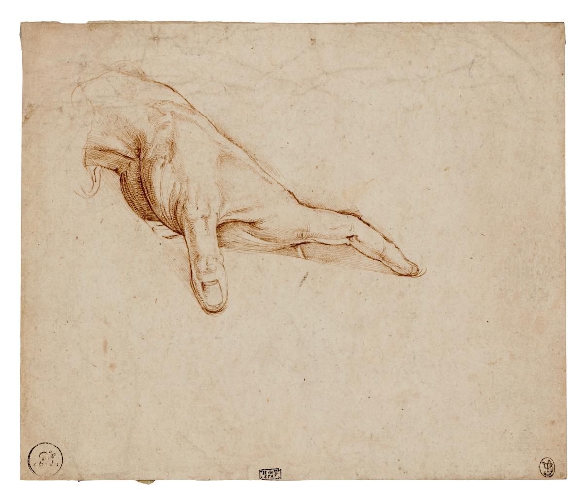 Battista Franco, Etude de amin, Plume et encre brune 195×235 mm Galerie de Bayser