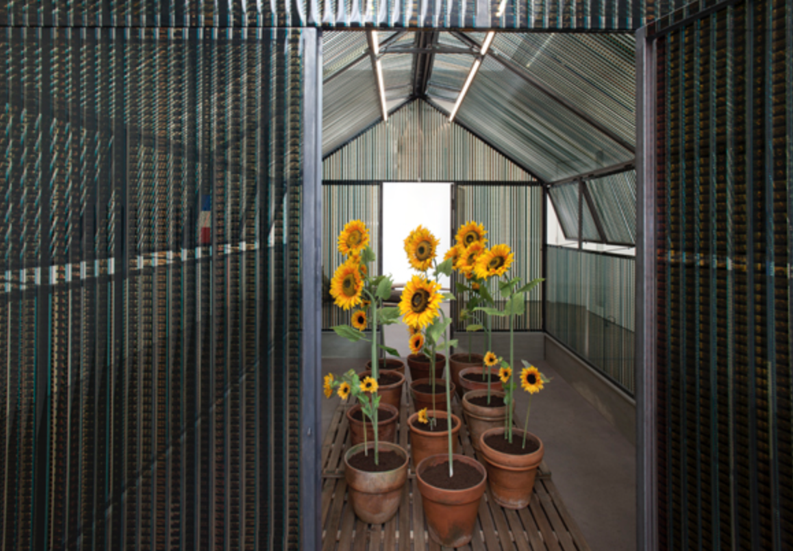 Exhibition view of A CINEMA SHACK : The greenhouse of Happiness, Galerie Nathalie Obadia, Paris, 2018