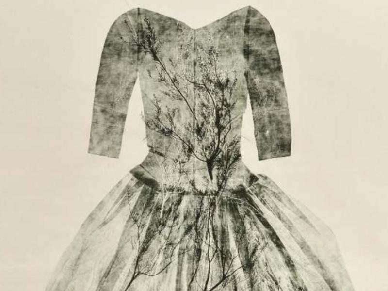 La poésie d'Eloïse Van der Heyden à la galerie Catherine Putman