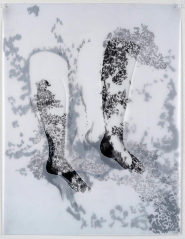 Christine Crozat, MOVING SPECIES N° 9, 2016, graphite et techniques mixtes, 65 x 50 cm