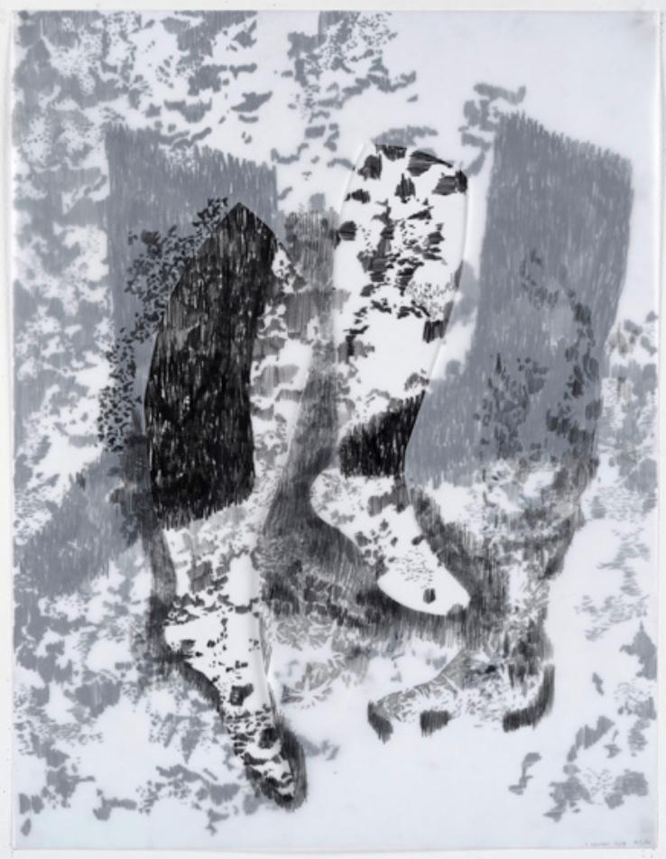 Christine Crozat, MOVING SPECIES N° 10, 2016, graphite et techniques mixtes, 65 x 50 cm