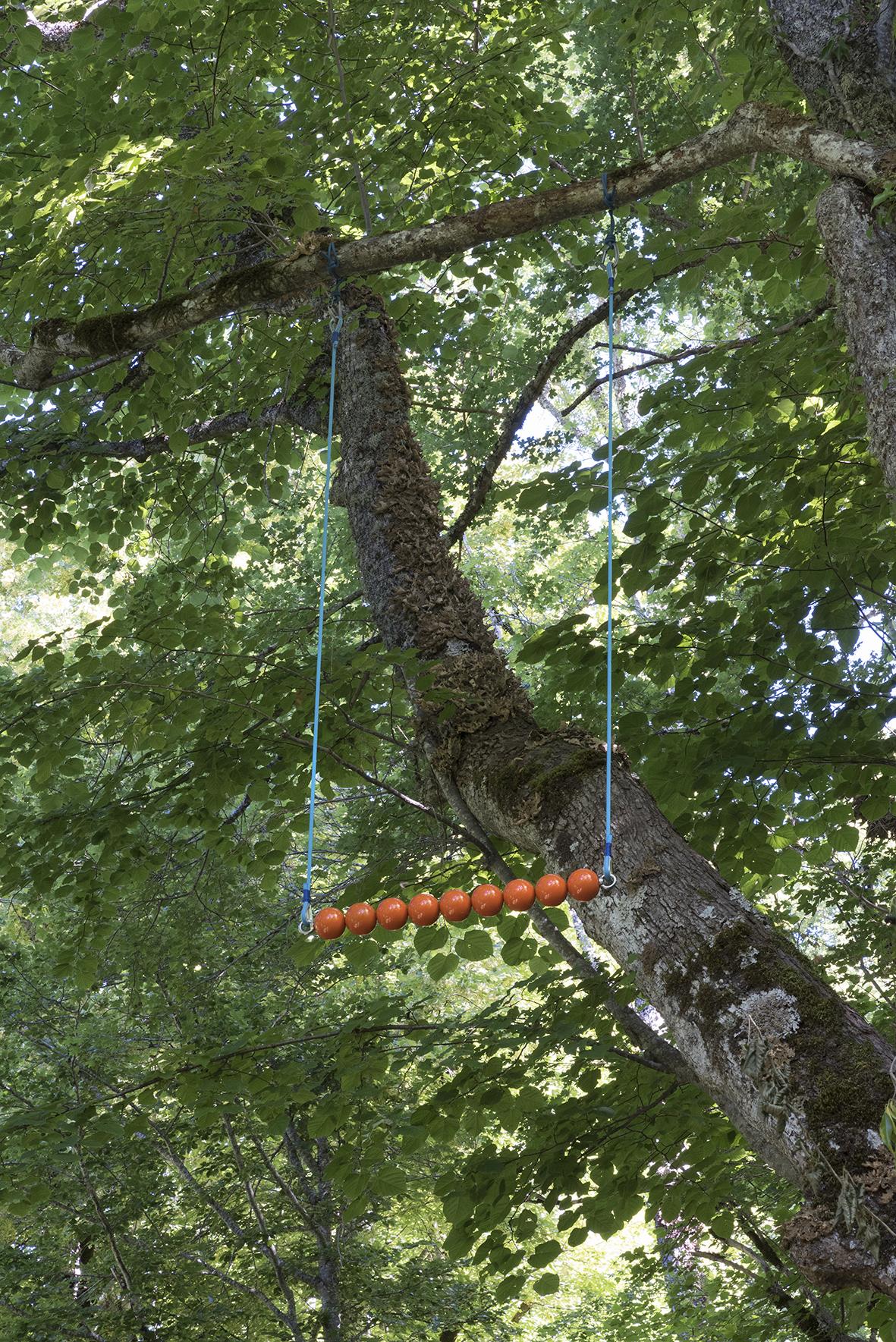 trapeze,Anne Marie Rognon, Saint-Flour