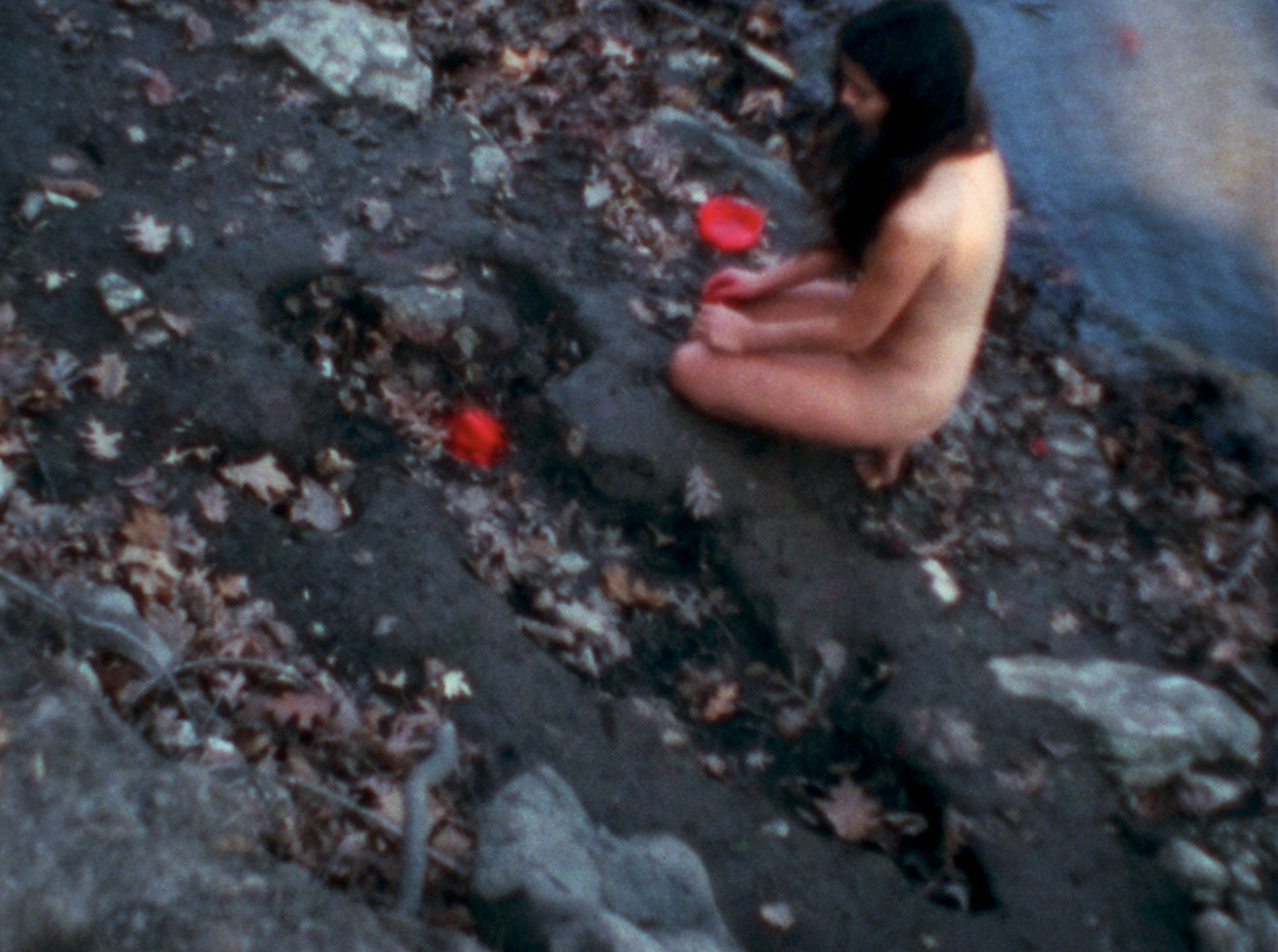 Corazón de Roca con Sangre 1975 Ana Mendieta Film super-8. © The Estate of Ana Mendieta Collection, LLC. Courtesy Galerie Lelong & Co.