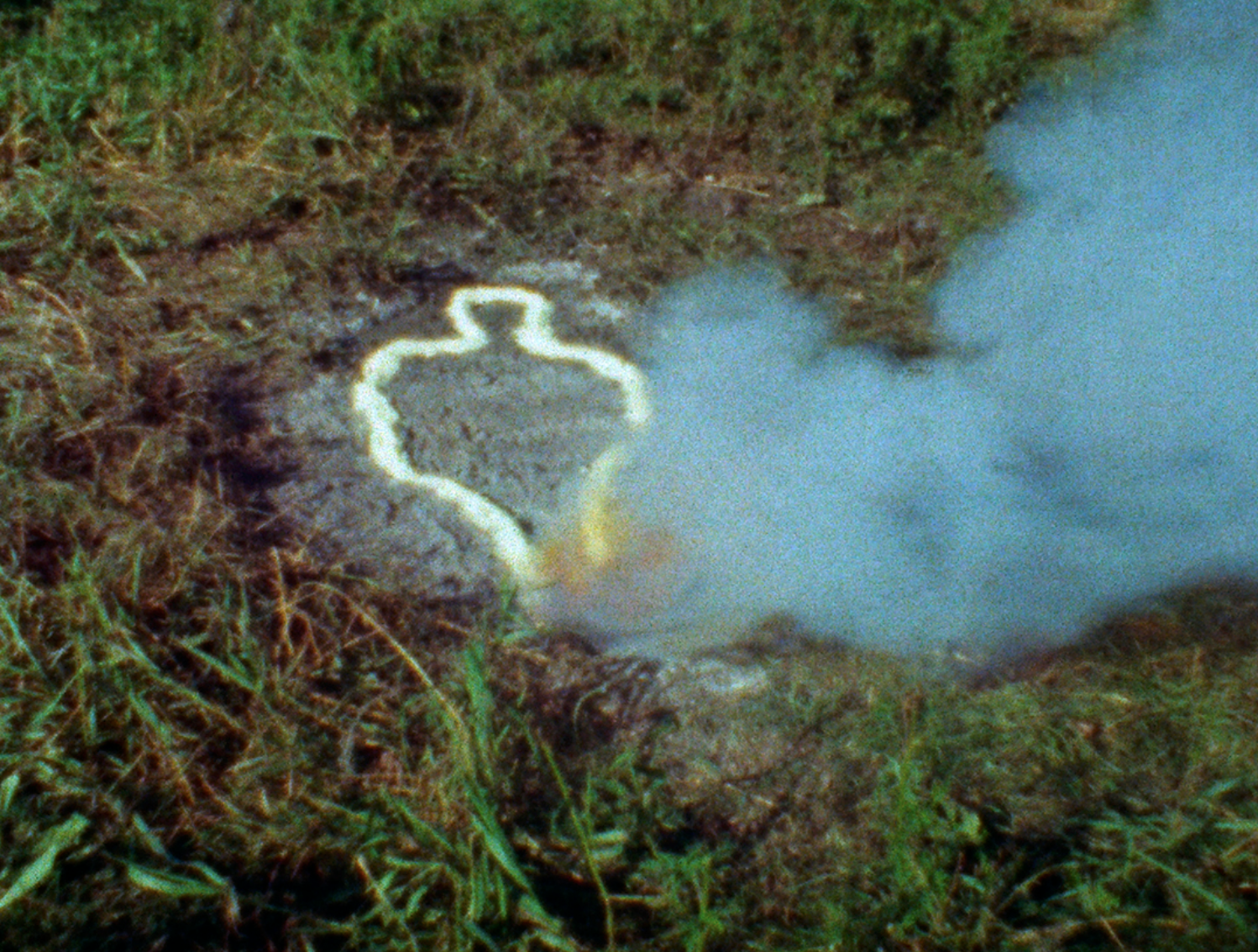 Untitled: Silueta Series 1978 Ana Mendieta Film super-8. © The Estate of Ana Mendieta Collection, LLC. Courtesy Galerie Lelong & Co.
