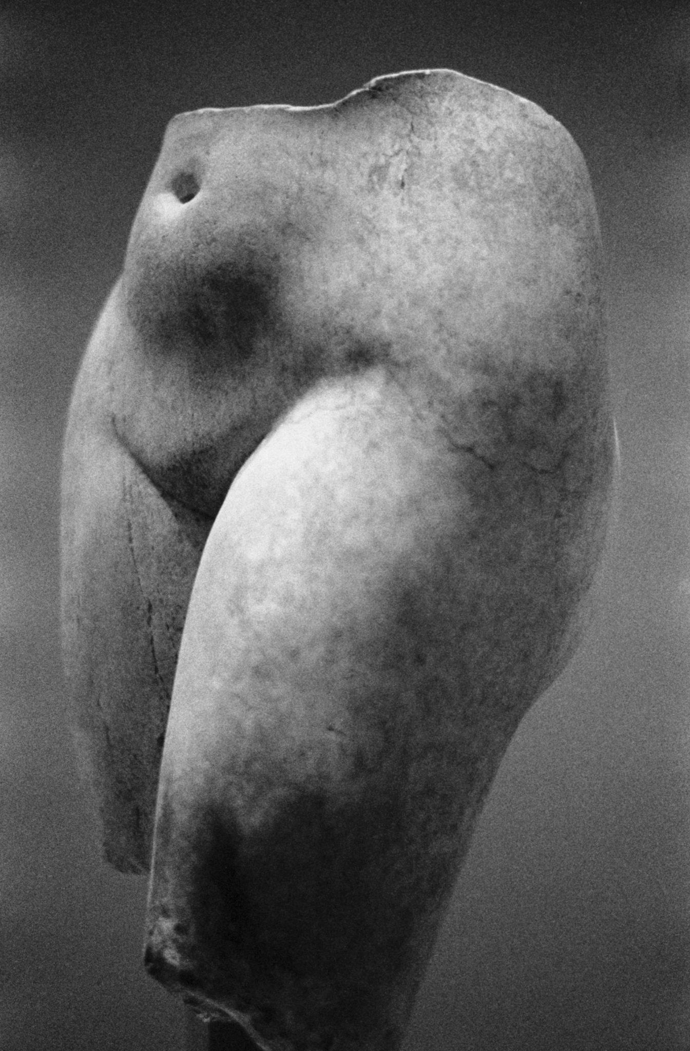 (c) Bart Julius Peters / courtesy Lunn Galerie 0,75 x 0,50 – Tirage argentique Galerie : LUNN  Artiste : Peters Bart Julius Pays de naissance : KOWEÏT  Année de naissance : 1971