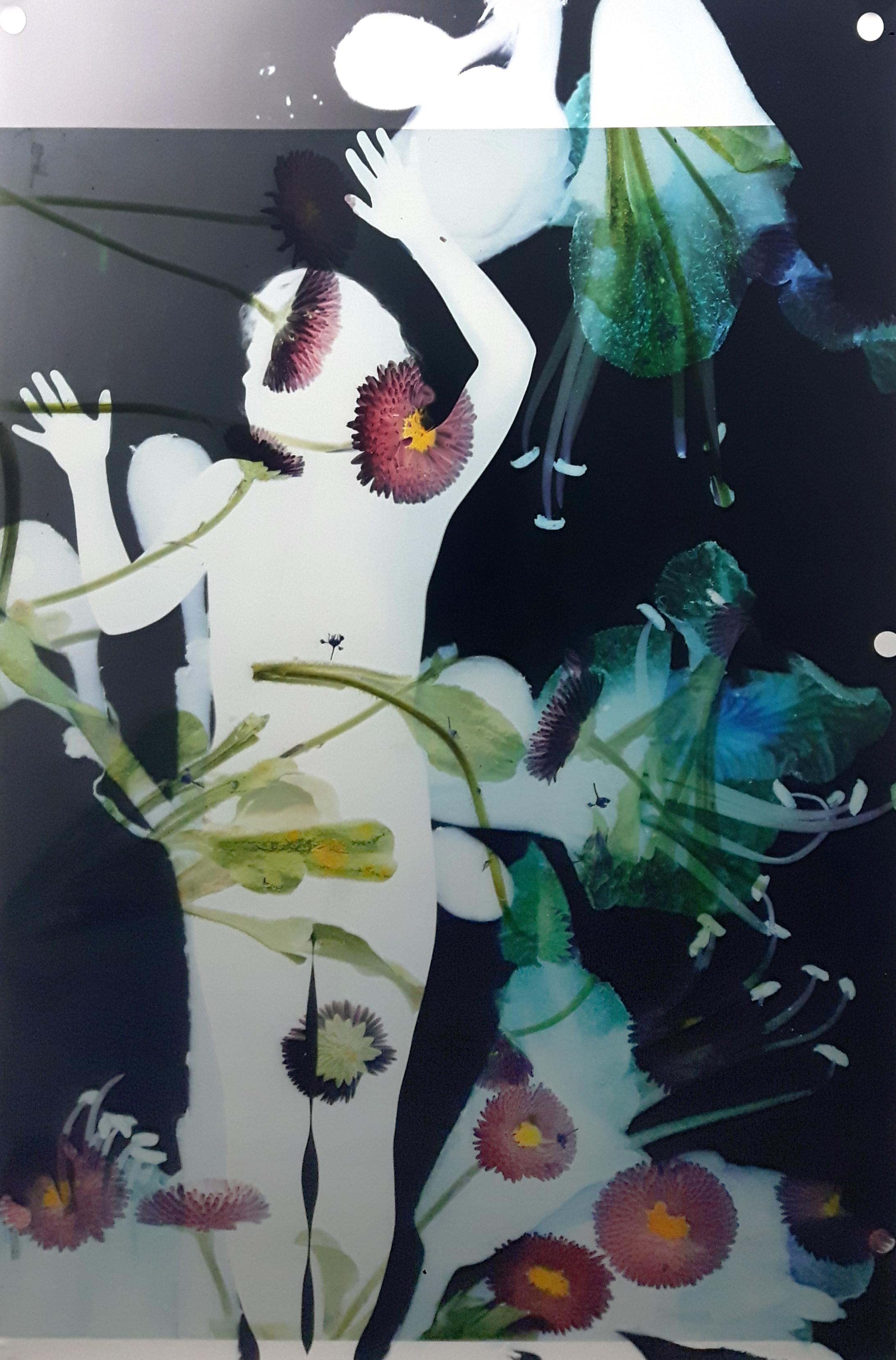 © Baptiste Rabichon, 17ème – f, 2017 / courtesy Galerie Paris-Beijing