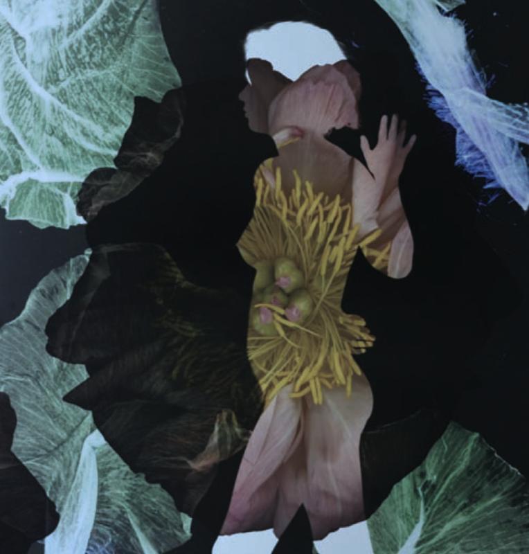 © Baptiste Rabichon, 17ème - 5, 2018 / courtesy Galerie Paris-Beijing