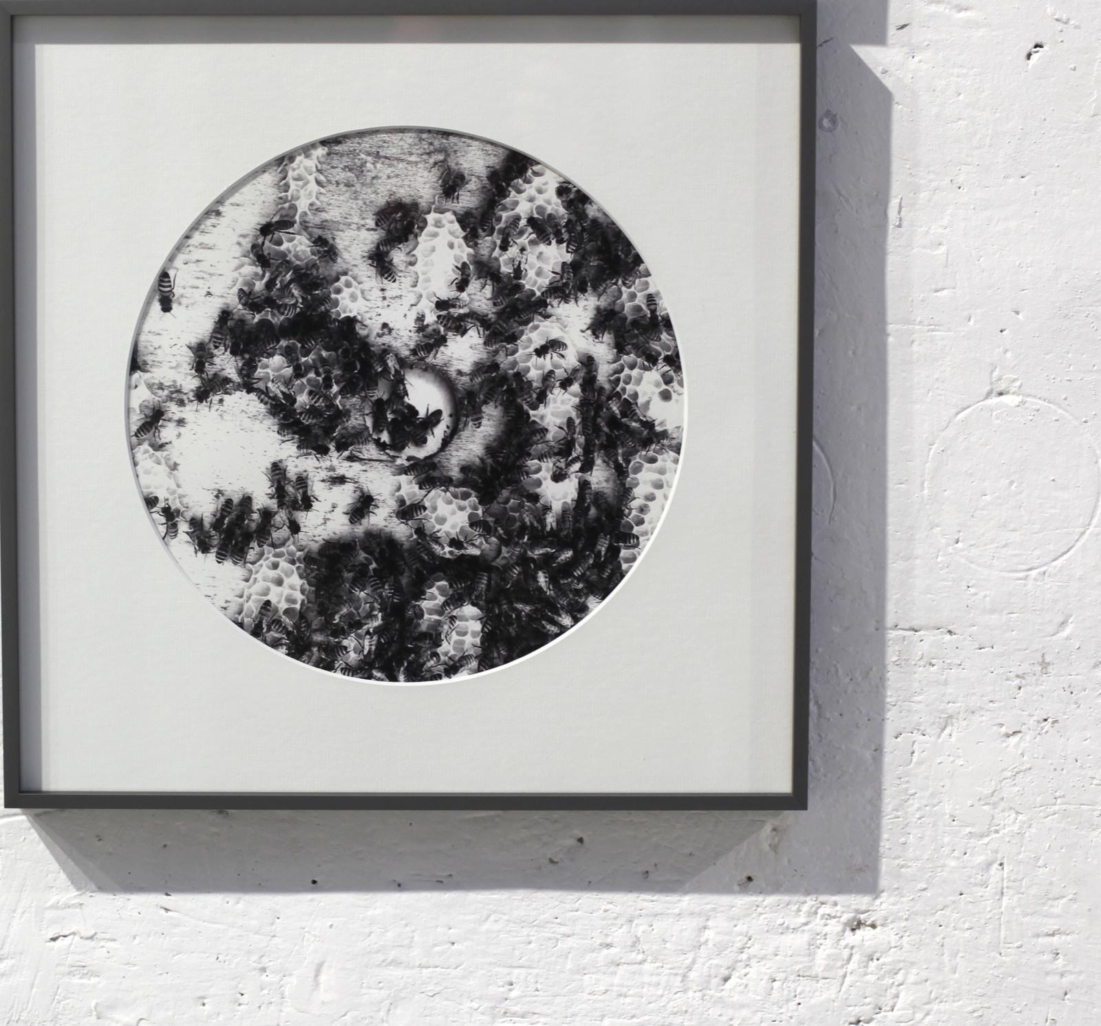 Vue de l'exposition Des artistes et des abeilles. Martine Mougin. Courtesy Martine Mougin.