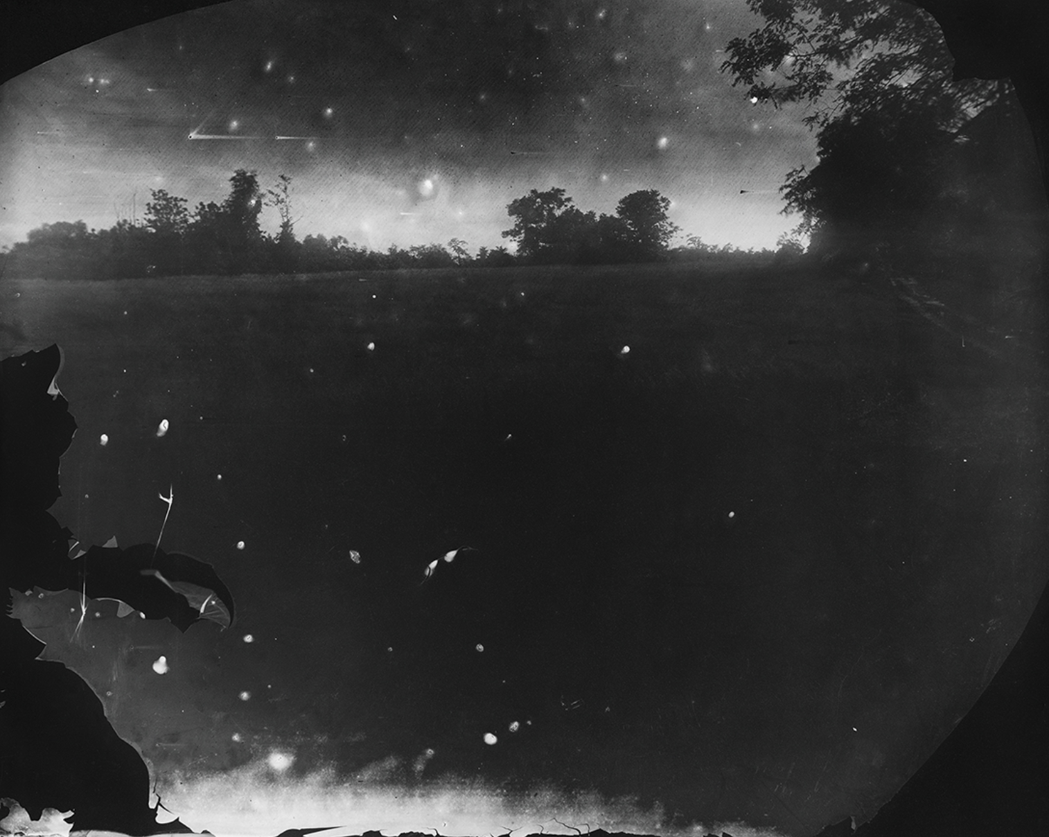 Battlefields, Antietam (Starry Night) 2001 Sally Mann Gelatin silver print. Alan Kirshner and Deborah Mihaloff Art Collection. © Sally Mann