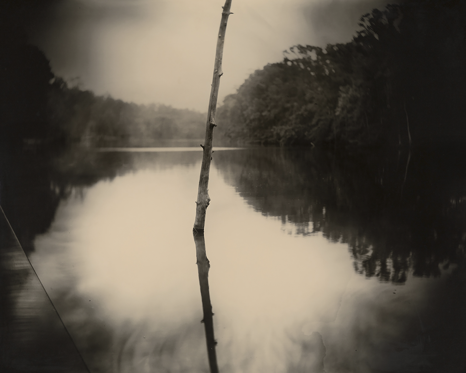 Deep South, Untitled (Stick) 1998 Sally Mann Courtesy of the New Orleans Museum of Art: Collection of H. Russell Albright, M.D. © Sally Mann