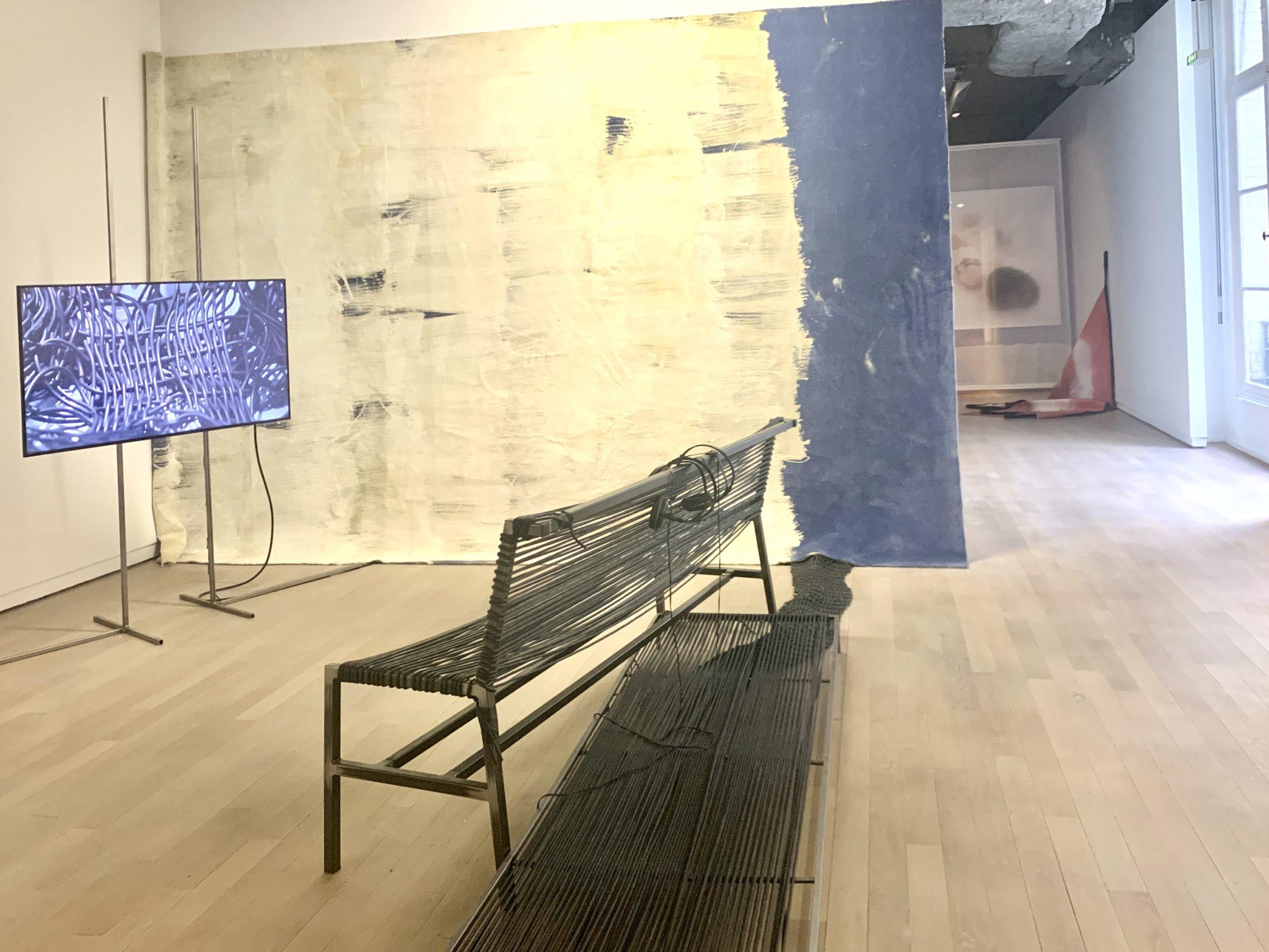 Vue de l'exposition, Photo ARTVISIONS, Etude sur l'empathie, Paris, Fondation Ricard. Du 3 décembre au 25 janvier 2020.