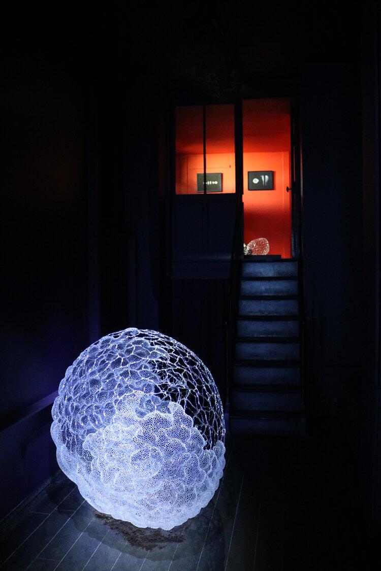 Vue+d'exposition,+Le+Prologue+de+la+Matière,+Kim+KototamaLune,+Courtesy+de+l'artiste+et+de+la+Galerie+Da-End,+2020-5