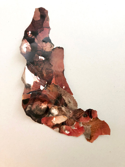 Gaëlle Chotard, sans titre, 2019_Encres et pyrogravure, 39 x 22 cm_Courtesy Galerie Papillon