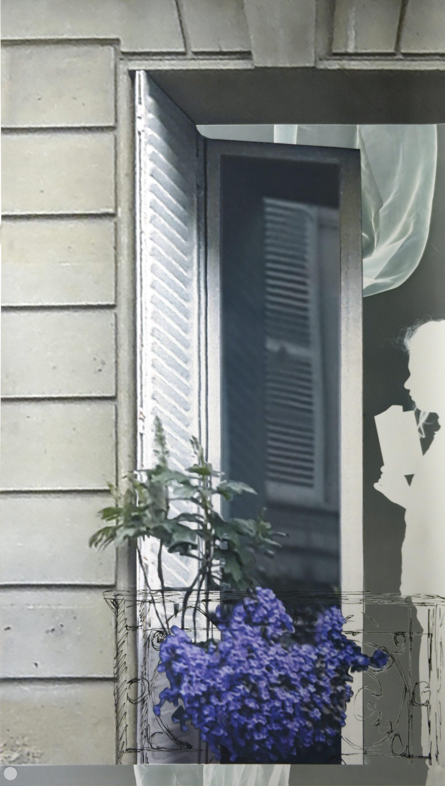 Baptiste Rabichon, «50bis, rue de Douai», 2019, série «Les balcons», 2017-2019,  épreuve chromogène unique dimensions variables, courtesy Galerie Paris-Beijing, Paris.