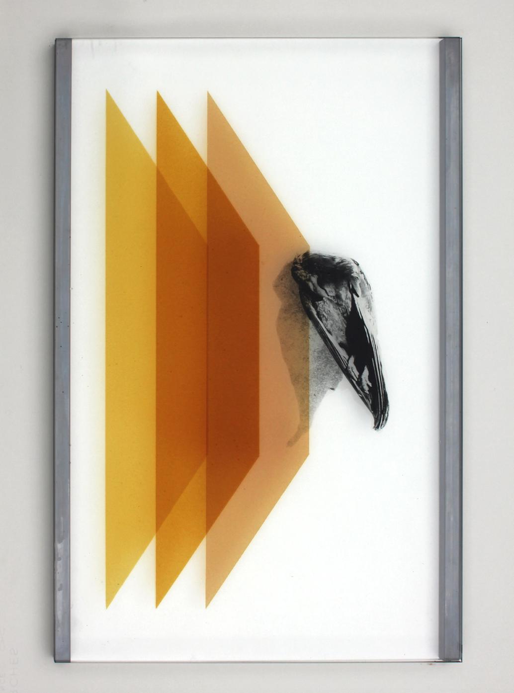 Pia Rondé & Fabien Saleil, Les profanes #01, 2020 Verre, cément jaune d'argent, photographie argentique, acier 60 x 40 cm. Unique, courtesy galerie Valeria Cetraro