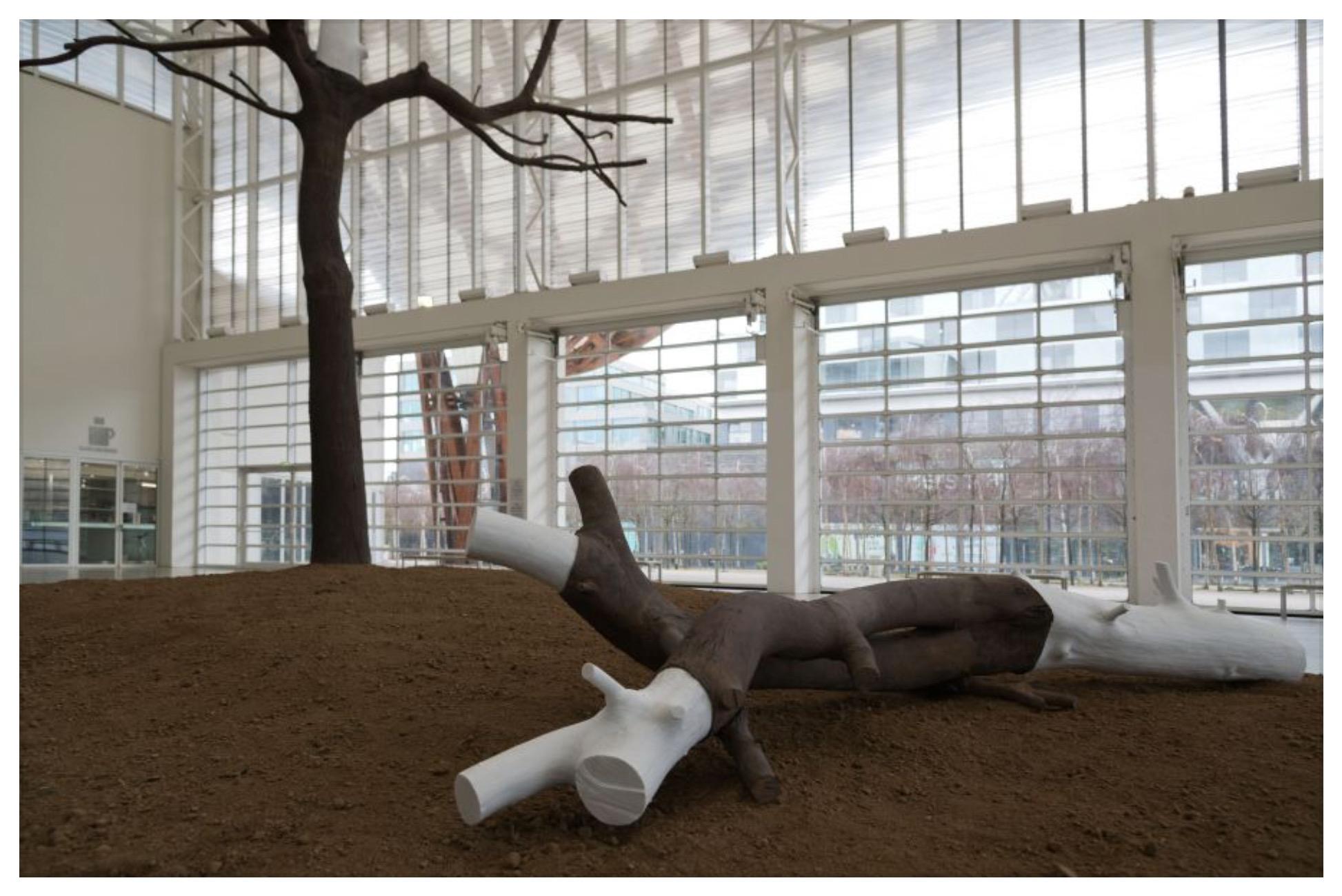 """fermer Giuseppe Penone, Indistinti confini – Noce [""""Frontières indistinctes – Noyer""""] (détail), 2020 © Adagp, Paris 2019 © Centre Pompidou-Metz / Photo Jacqueline Trichard / 2020"""