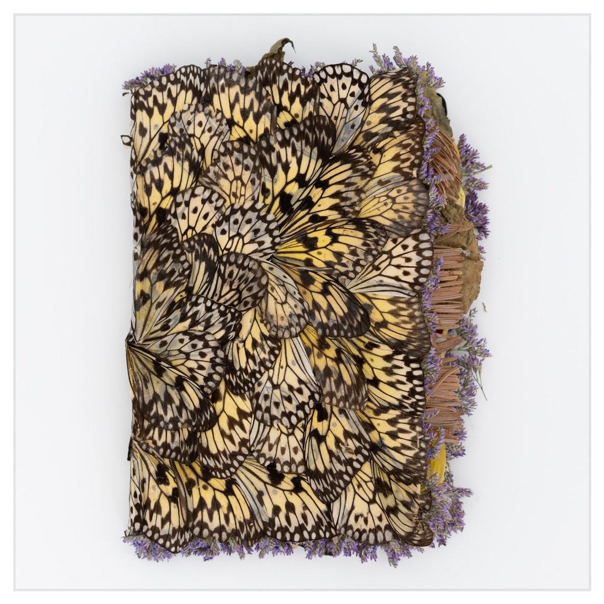 Rachel Marks, Diary II ailes de papillons, pétals, feuilles, épines de pin, couverture de livre 17 x 24 x 6 cm 2020 photo : François Xavier Watine