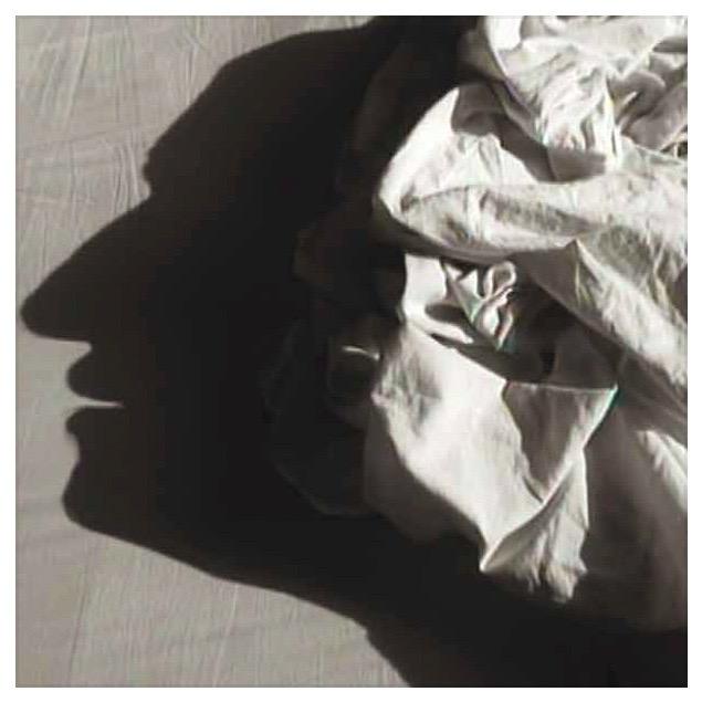Les hommes dans les draps, courtesy Alain Fleischer