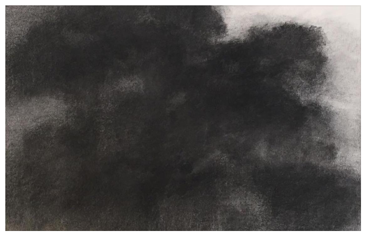 """ALEXANDRE HOLLAN Forme et profondeur, """"Le grand Chêne dansant"""" (2016) fusain sur papier – H 60 x L 80 cm"""